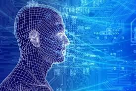 brain network