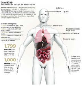 gripe h7n9