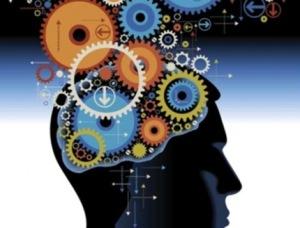 cerebro 03