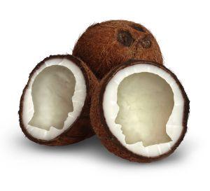 coconut_brain_alzheimers