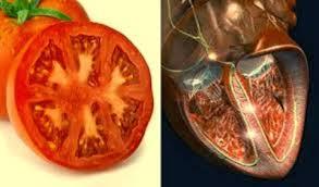 tomate corazon