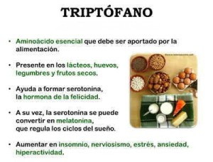 triptofano propiedades