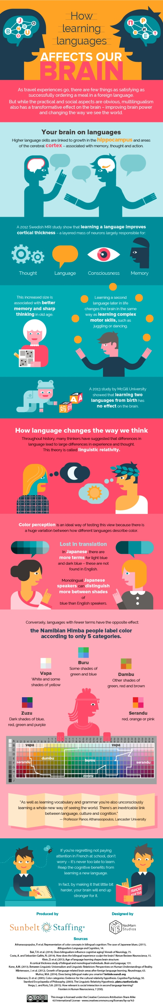 brains languages