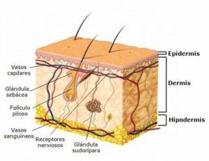 menu semanal para personas con acido urico alimentos recomendados para bajar el acido urico remedios naturales para la gota en el pie