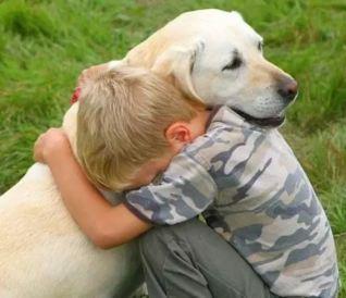 El perro el mejor amigo