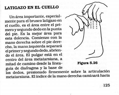 https iridioscopio.files.wordpress.com 2012 07 pdf